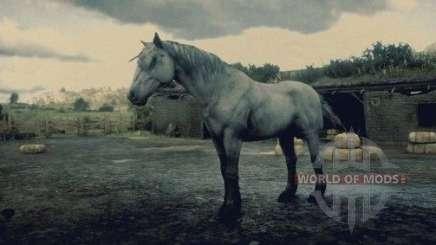 Myshasto-savrasy Mustang