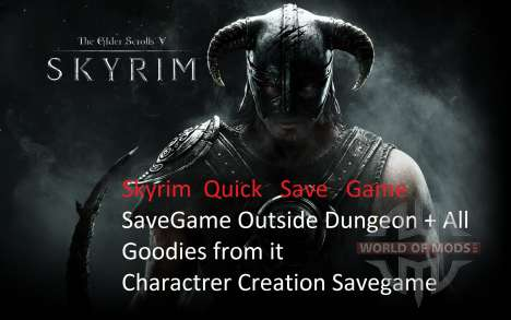 La red de ahorro después de la entrada en vigor  para Skyrim