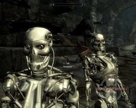Terminadores de raza para Skyrim sexta pantalla