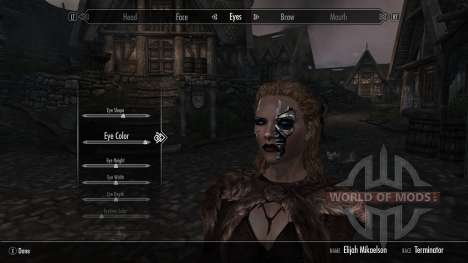 Terminadores de raza para el tercer Skyrim pantalla