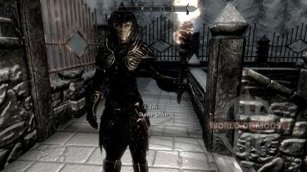 Negro y oro-los elfos de la armadura para Skyrim