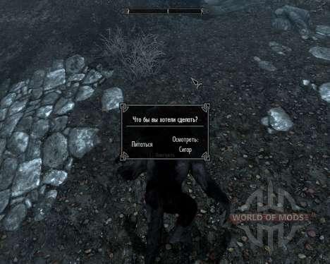 Buscar en el mapa para el hombre lobo y vampiro para Skyrim