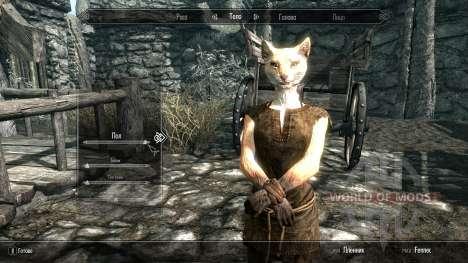 Fox la raza jugable jugar para el zorro para Skyrim segunda pantalla
