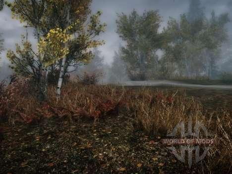 Más pasto-pasto para Skyrim segunda pantalla