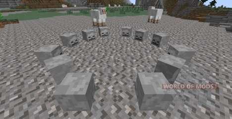 Skulls Plus para Minecraft