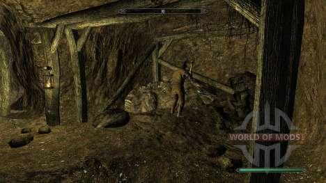 Reversusque mina para el cuarto Skyrim pantalla