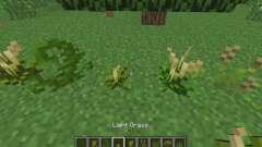 La nueva vegetación