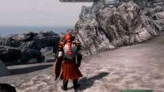 Las armas y armaduras de dragón Caballero de dot