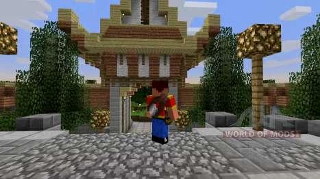Instrumentos en la parte de atrás para Minecraft