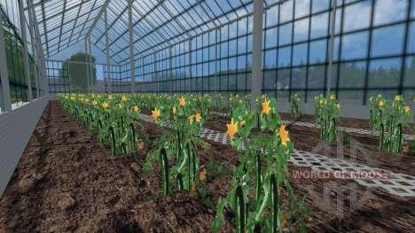 Los invernaderos de tomates y pepinos para Farming Simulator 2015