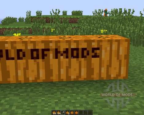 Pumpkin Carvier para Minecraft