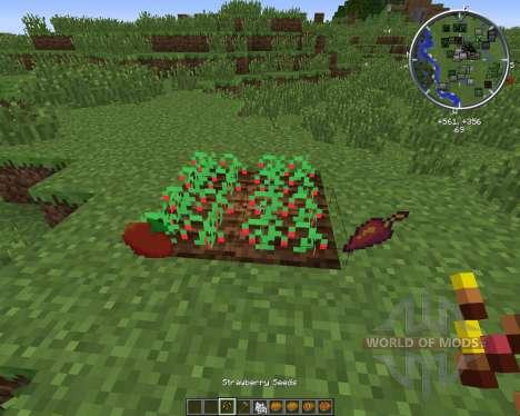 PieCraft para Minecraft