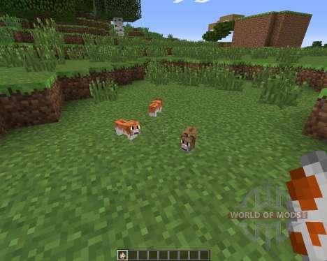 Invincible Hamster para Minecraft