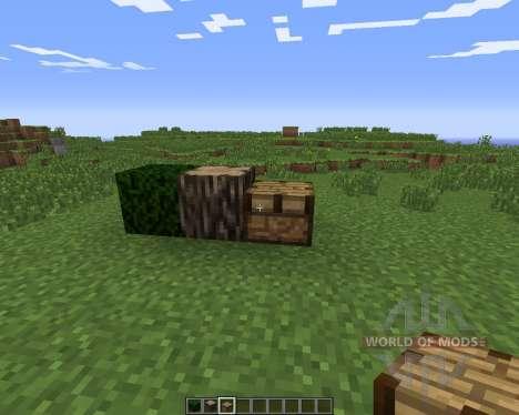 Psychedelicraft para Minecraft