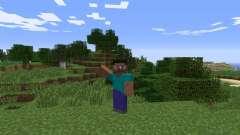 Emotes para Minecraft