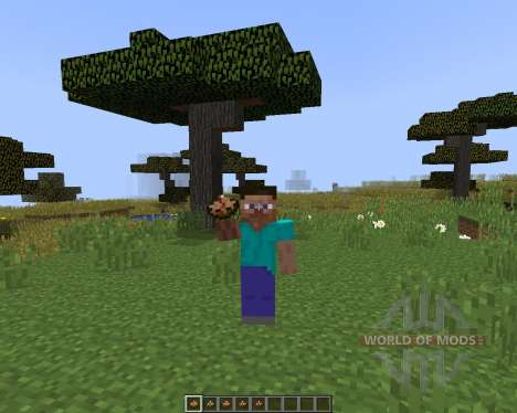 Larrys Stews para Minecraft