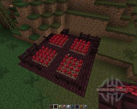 iHouse [1.7.2] para Minecraft