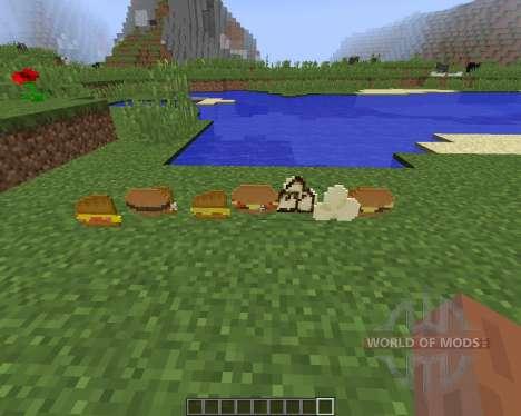 Birds Foods [1.8] para Minecraft