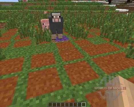 Monster Spawn Highlighter [1.6.4] para Minecraft