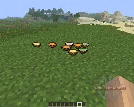 Soup [1.6.4] para Minecraft