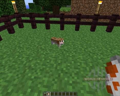 Invincible Hamster [1.5.2] para Minecraft