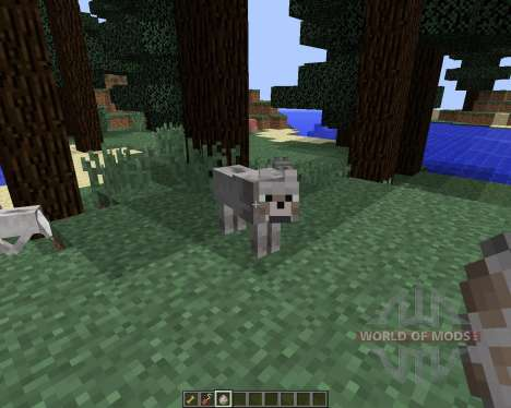 Sophisticated Wolves [1.8] para Minecraft