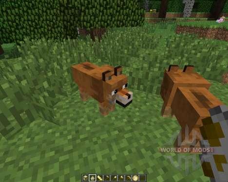 Doge [1.6.4] para Minecraft