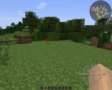 RadarBro [1.7.2] para Minecraft