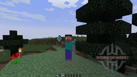 Roxas Experience Gem [1.8] para Minecraft