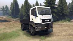 MAN TGS Little Flatbed para Spin Tires