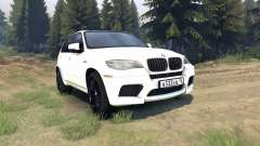 BMW X5 M para Spin Tires