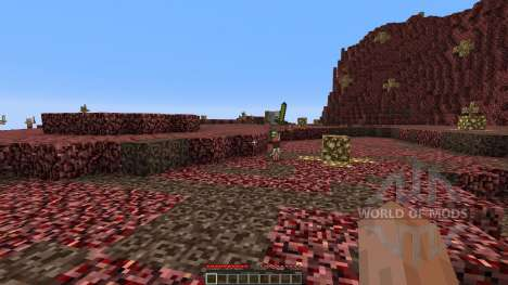 The new nether para Minecraft