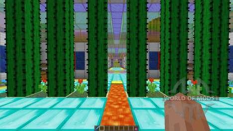 Cube Control Remix para Minecraft