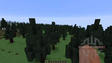 Pine Valley Minecraft Custom Terrain para Minecraft