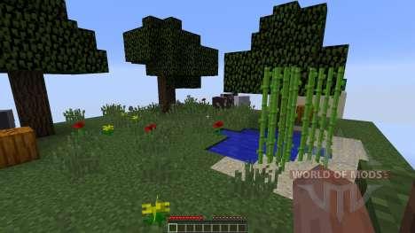 Chunks para Minecraft