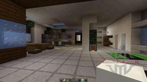 Another para Minecraft