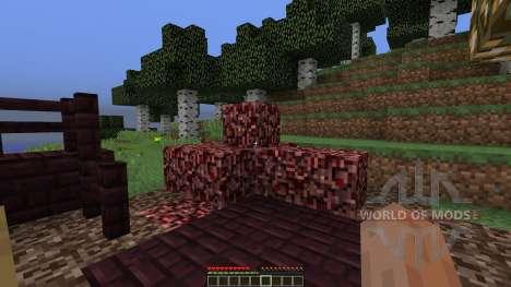 NetherLast para Minecraft