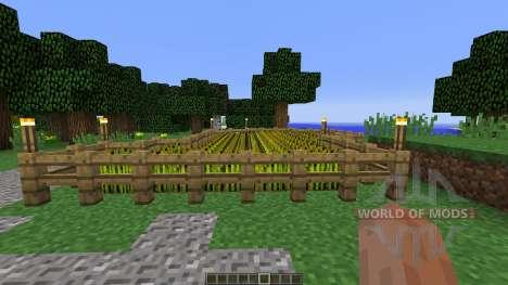 Medieval House Farm para Minecraft