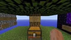 Adventure Skylands Survival