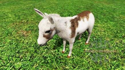 Animals para Farming Simulator 2015