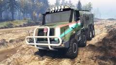 Tatra 163 Jamal 8x8 v3.0 para Spin Tires