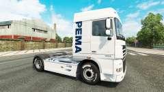 El Pema de la piel para el camión DAF para Euro Truck Simulator 2