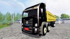 Volkswagen Constellation 24.250 8x8
