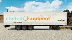 La piel Fría de Ambiente en una cortina semi-remolque para Euro Truck Simulator 2
