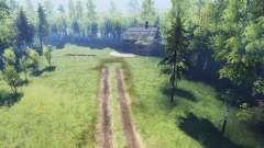 Espeluznante bosque v2.0 para Spin Tires
