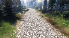 La textura de gris asfalto con grava blanca para Spin Tires