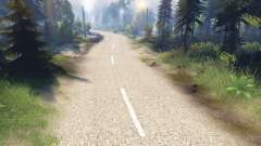 La pálida textura de los dos carriles de asfalto para Spin Tires
