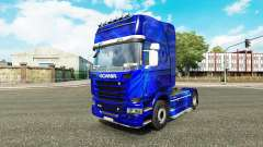 Skins para Scania camión