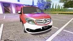 Mercedes-Benz Citan Kastenwagen (W415)
