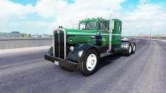 La piel en el Palmer Trucking LLC camión Kenwort